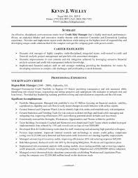 Telecom Project Manager Resume Sample Fresh Portfolio Samples Refrence Awesome It