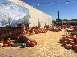 Pumpkin Patch Parker County Texas by Rockwall County Tx Real Estate Rockwall County Homes For Sale
