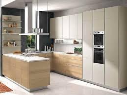 cuisine bois laqué déco cuisine bois laque blanc 91 nimes 06480835 garage
