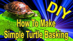 Uvb Lamp Vitamin D3 by Diy How To Make Simple Turtle Basking With Uva Uvb Lamp Youtube