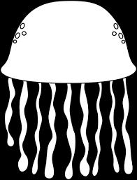Black and White Black and White Jellyfish