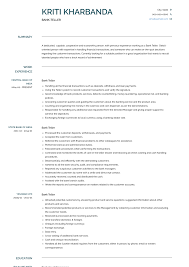 Bank Teller - Resume Samples & Templates | VisualCV Bank Teller Resume Sample Banking Template Bankers Cv Templates Application Letter For New College Essay Samples Written By Teens Teen Of Dupage With No Experience Lead Tellersume Skills Check Head Samples Velvet Jobs Cover Unique Objective Fresh Free America Example And Guide For 2019 Graduate Beautiful