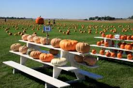 Best Pumpkin Patch Des Moines by Fall In Des Moines Ia Farms Orchards U0026 Things To Do