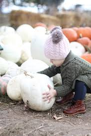 Pumpkin Patch Reno by The Best Baby Food The Pumpkin Patch Positively Oakes