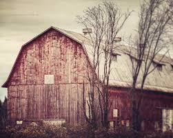 The Abandoned One • Lisa Russo Fine Art Photography Scary Dairy Barn 2 By Puresoulphotography On Deviantart Art Prints Lovely Wall For Your Farmhouse Decor 14 Stunning Photographs That Might Inspire A Weekend Drive In Mayowood Stone Fall Wedding Minnesota Photographer Memory Montage Otography Blog Sarah Dan Wolcott Oregon Rustic Decor Red Photography Doors Photo 5x7 Signed Print The Briars Wedding Franklin Tn Phil Savage Charming Wisconsin Farmhouse Sugarland Upcoming Orchid Minisessions Atlanta Child