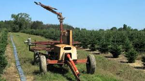 Xmas Tree Watering Devices by Irrigation Systems For Christmas Tree Production Youtube