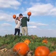 Pumpkin Patch Farms Raleigh Nc by Pick A Pumpkin At Carrigan Farms Mooresville Offline