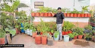 Small Terrace Garden Ideas Plants For Apartment Balcony