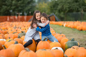 Free Pumpkin Patch Charleston Sc by Five Fall Festivals You Won U0027t Want To Miss In Charleston