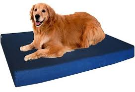 25 best rated dog beds for large dogs 2017 pet life today