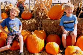 Nearby Pumpkin Patches by Books About Autumn Lesson Plans For Ages 3 7 Mimi And The Grands