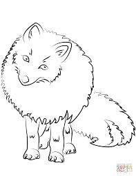 Dibujo De Ilustración De Un Zorro Polar Para Colorear Dibujos Para