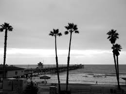 Photography Black And White Surf Water California Beach Sand Waves Ocean Shore Palm Trees Surfing Wood