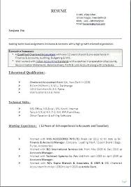 Mis Executive Resume Sample Format For Accounts Senior Advertising Manager Account