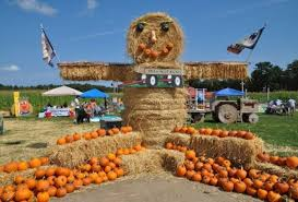 Pumpkin Picking Corn Maze Long Island Ny by New England Pumpkin Patches With Bonus Fun For Families