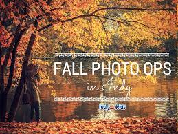 Indianapolis Apple Orchard Pumpkin Patch by Fall Photo Ops In Indy