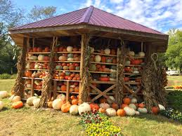 Pumpkin Patch Memphis Tennessee by The Barbecue Fiend Fall Fest 2014 Nashville Tn