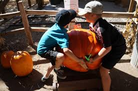 Corona Pumpkin Patch Hours by The Best Pumpkin Patches In Orange County Oc Mom Blog Oc Mom Blog