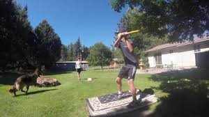 2015 Home Run Derby- Wiffle Ball - YouTube Wiffle Ball Toss Carnival Style Party Game Rental My Circus Championship Sunday At The 2013 Travis Roy Foundation Wiffle 41 Best Wiffleball Fields Images On Pinterest Ball Wiffleball With Owen Youtube Fieldstadium Bagacom Park Toss Game Using Plastic Buckets Screwed Into An Old Nbh Tv 2 Part 1 Ft Dillon Riedmiller Crazy Stadium In Backyard 2015 Clark Field Tournament Saturday Kids Playing In 9714
