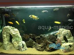 Extra Large Fish Tank Decorations by Aquarium Extra Large Rock Cave For Tropical Fish Tanks For