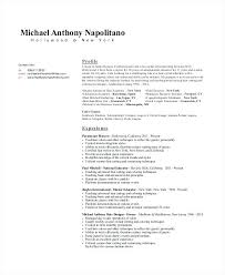 Fashion Stylist Resume Examples Experienced Hair In Designer Objective