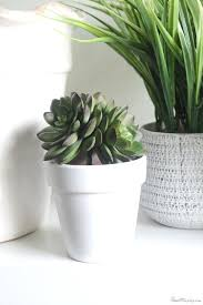 Best Pot Plant For Bathroom by Classy Artificial Plants For Bathrooms Artificial Plants For
