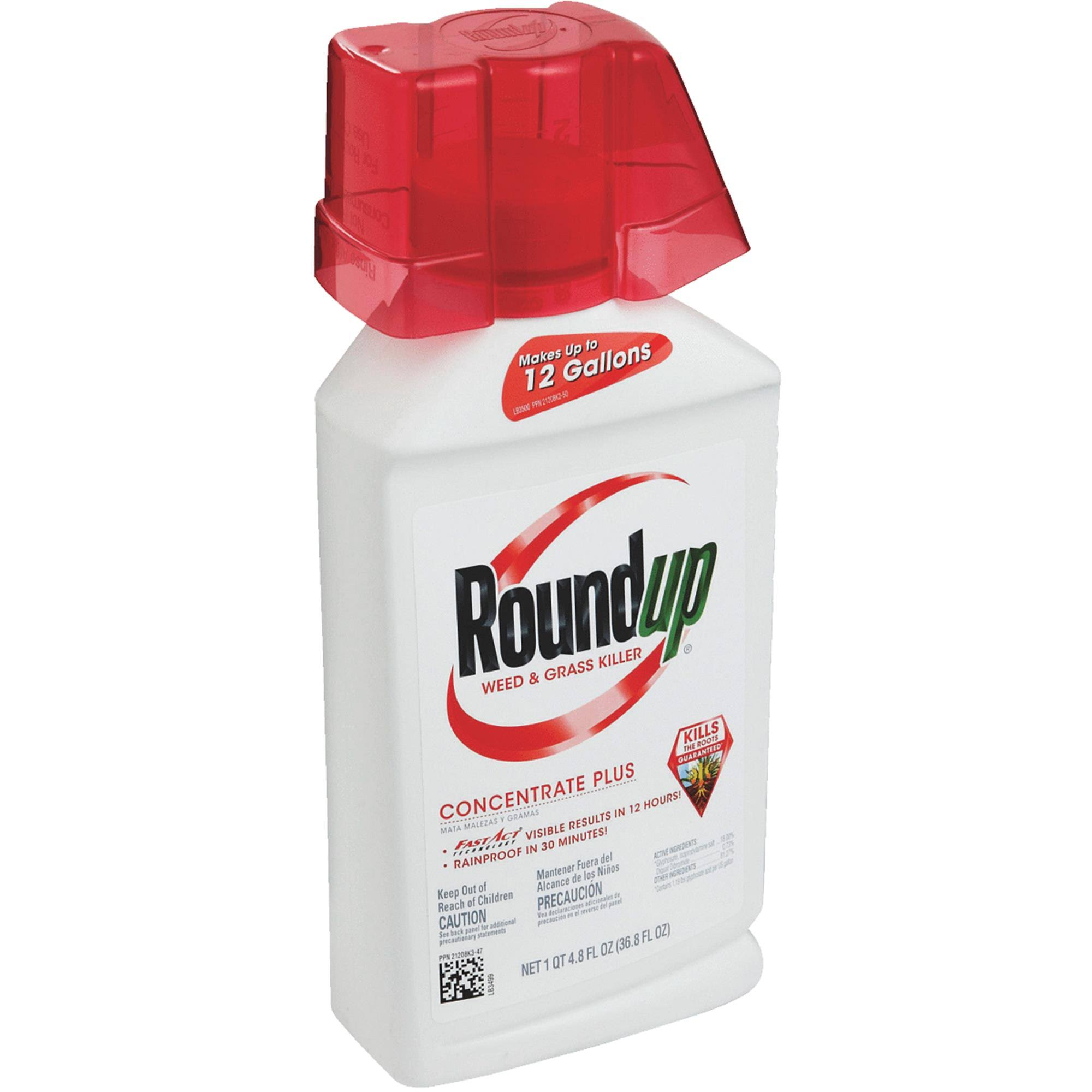 Roundup Weed and Grass Killer Concentrate - 36.8oz