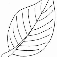 Beech Autumn Leaf Coloring Page