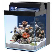 aquarium nano eau de mer aquarium eau de mer