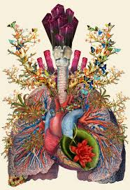 Based In Arizona Mixed Media Artist Travis Bedel Creates Unique Works Of Art The Form Anatomical Collages Drawing On Mediums Like Cut Paper Or