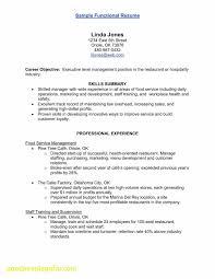 Electrical Resume Skills New Journeyman Electrician Resume Samples ...
