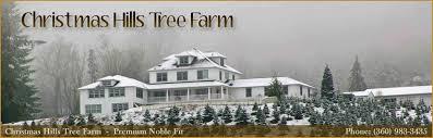 Noble Fir Fresh Christmas Trees