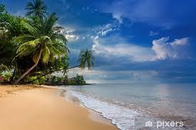 fototapete paradise natur meer wasser sommer und hotel haus am wendekreis
