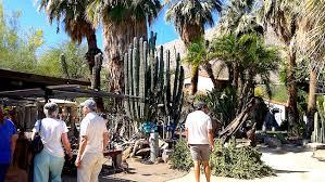Moorten Botanical Garden – the Prickliest Gardens in Town