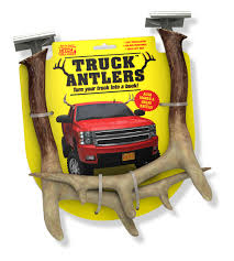 Package Design — McIntyre Design & Illustration Photos Opening Day Of Wyomings Shed Hunting Season Outdoor Life Holiday Lighted Car Antlers Pep Boys Youtube Wip Beta Released Beamng Antlers The Cairngorm Reindeer Herd Dump Truck Full Image Photo Bigstock Atoka Ok Official Website Meg With Flowers By Myrtle Bracken Vw Kombi Worlds Best And Truck Flickr Hive Mind Amazoncom Bluegrass Decals Show Me Your Rack Deer May 2009 Bari Patch My Antler Base Shift Knob Elk Pinterest Cars Buck You Vinyl Window Decal Nature Woods Redneck