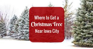 Fresh Cut Christmas Trees At Menards by Where To Get A Christmas Tree In The Iowa City Area