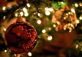 Balsam Christmas Tree Care by Top Tips On Caring For Your Christmas Tree International Timber