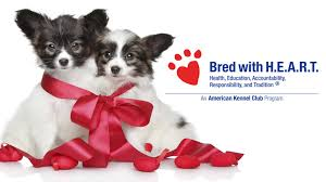 AKC Bred With H.E.A.R.T. FAQs Akc Reunite Home Facebook Npr Shop Promo Code Free Shipping Sheboygan Sun 613 Pages 1 32 Text Version Fliphtml5 Uldaseethatiktk Urlscanio Pet Microchip Scanner Universal Handheld Animal Chip Reader Portable Rfid Supports For Iso 411785 Fdxb And Id64 Chewycom Coupon Codes Door Heat Stopper Giant Bicycles Com Fitness Zone Bred With Heart Faqs Owyheestar Weimaraners News Pizza Hut Big Dinner Box Enterprise 20 Aaa