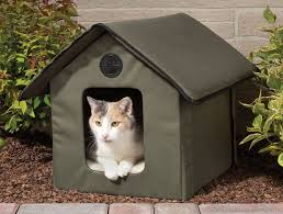 cat in house heated outdoor cat house the green