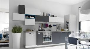 Image Of Contemporary Gray Color Kitchen Cabinets