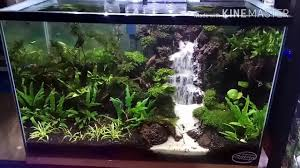 Waterfall Aquascape Tank 35*35*60(airterjunpasir) - YouTube Aquascape Waterfall Tjupinang Part 2 Youtube Modern Aquarium Design With Style For New Interior Aquascape Low Cost My Waterfall Nhaquascape Pro Pondwater Feature Pumpschester Rockingham Diy Pondless Waterfallsbackyard Landscape Ideasmonmouth Nj Aqualand Nighttime Winter By Inc Photo Projectswarwickorange Countynynorthern Its Called Strenght Of A Thousand Stone Backyard Waterfalllow Maintenance Water Just Add And Patio Amazoncom Kit 3 W Free Led 3light
