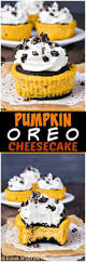 Pinterest Pumpkin Cheesecake Snickerdoodles by 7027 Best Cheesecake Images On Pinterest
