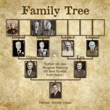 I Am Always On The Lookout For Innovative Ideas Presenting Family Tree Data