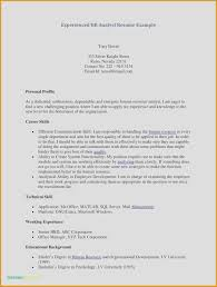 Professional Background Resume Examples Outline Free Awesome Samples Lovely