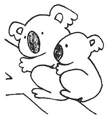 Koala Preschool Coloring Pages Zoo Animals