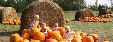 Best Pumpkin Patches Near Milwaukee by Looking For A Pumpkin Farm Oak Creek Wi Patch