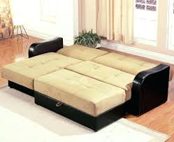 Ikea Convertible Sofa Bed With Storage by Ikea Sleeper Sofas Manstad Twin Brother Fagelbo Sofa Bed From