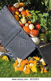 Pumpkin Patches In Shepherdstown Wv by Old Wagon And With Pumpkins Stock Photo Royalty Free Image
