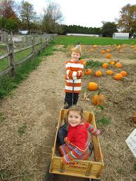 Pumpkin Picking Near Lancaster Pa by Gunning It King U0027s Pumpkin Farm Parkesburg Pa