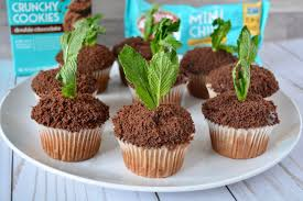 Double Mint Chocolate Crunch Cupcakes